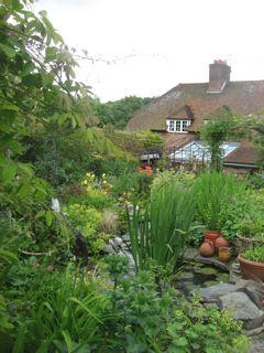 The garden of Rosemary Miller