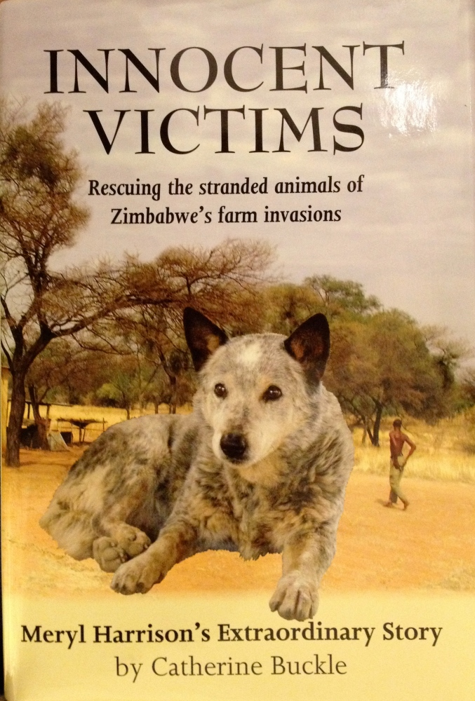 The courage to save the animals - interview with Meryl Harrison (3/3)