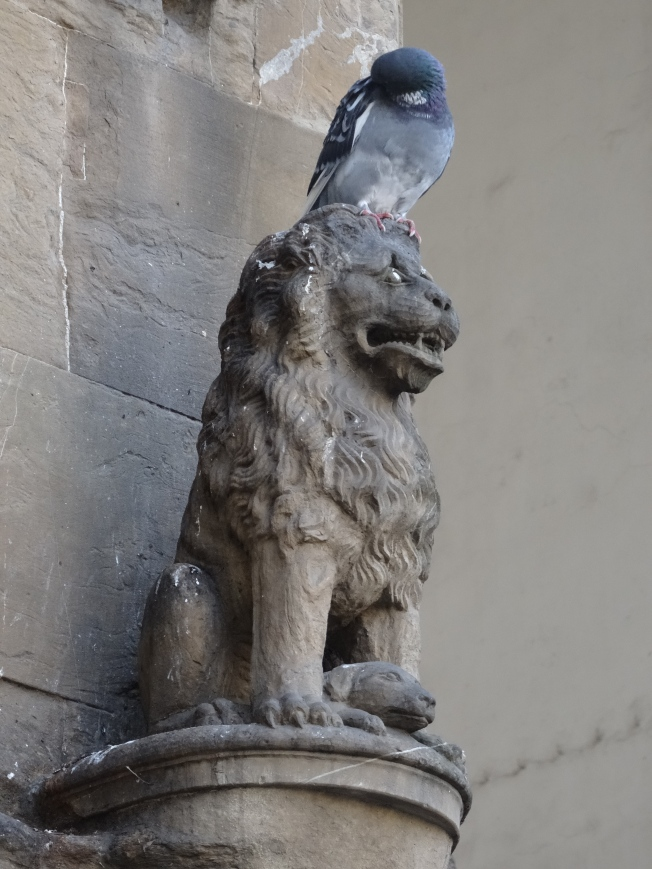 A pigeon on a statue in Florence