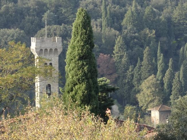 View down the hillside below Fiesole