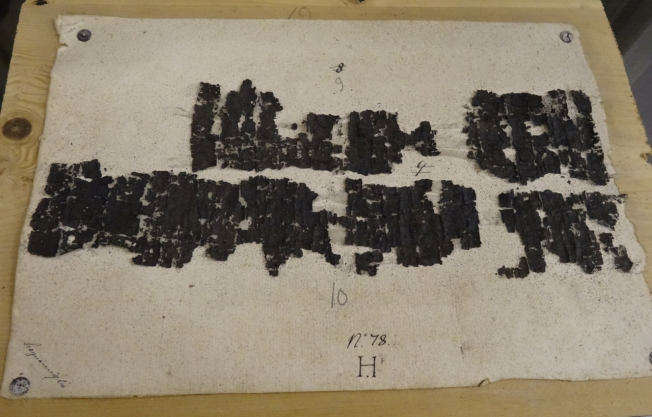 a Latin text from one of the Herculaneum papyri