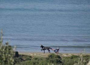 Flashes on the shoreline in Cuma