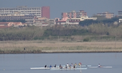Rowers on Lago di Patria