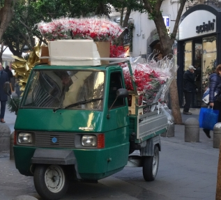 Poinsettia delivery in Naples, Italy