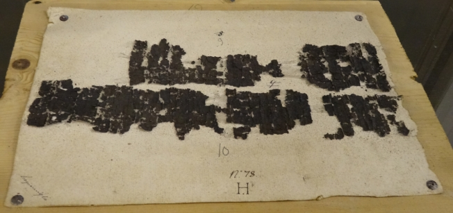 One of the Herculaneum papyri - part of the only classical library of any size to have survived from the ancient world