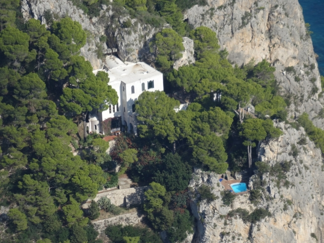 Nest on the cliffs of the island of Capri