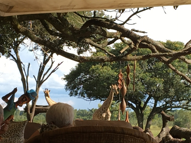 Wild is Life - the animal sanctuary outside Harare, in Zimbabwe