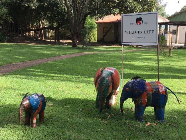 Wild is Life, the animal sanctuary outside Harare, in Zimbabwe