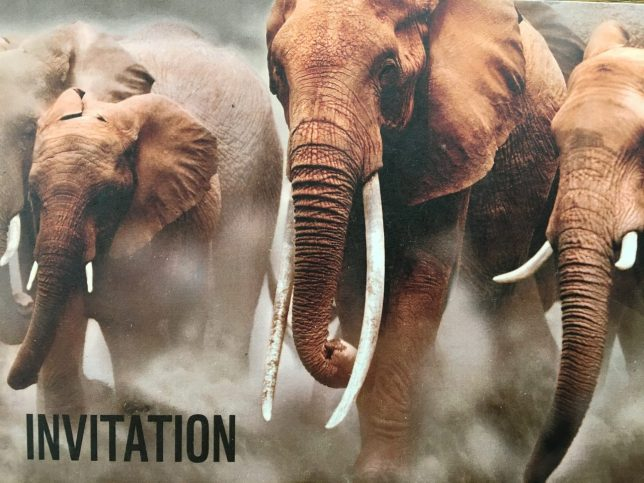 Invitation to the reception held by the Chinese Embassy in London and the WWF-UK to mark the closure of China's domestic ivory market