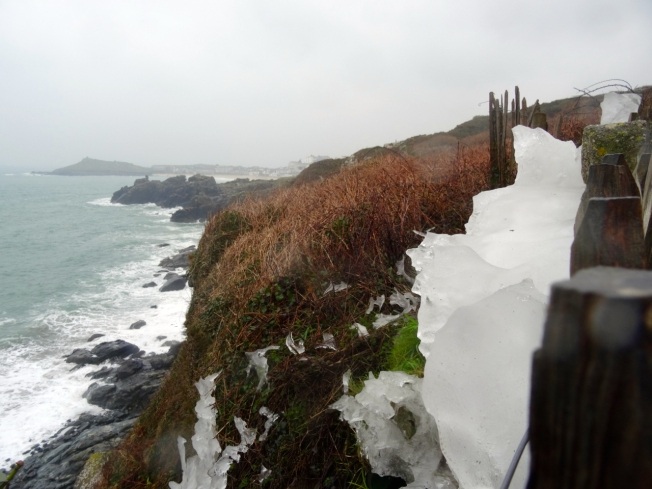 Ice trapped along a fence line on the coastal path between St Ives and Zennor