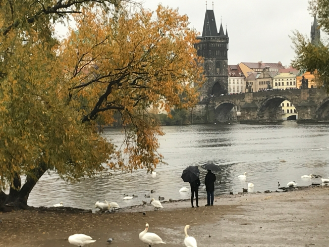 The Vltava River looking across to Charles Bridge in Prague