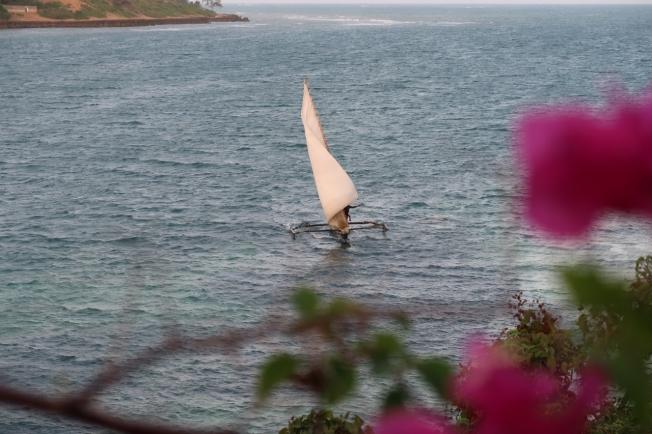 Ngalawa - bringing in the sail - Kilifi Kenya