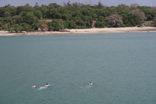 Swimming Kilifi Creek