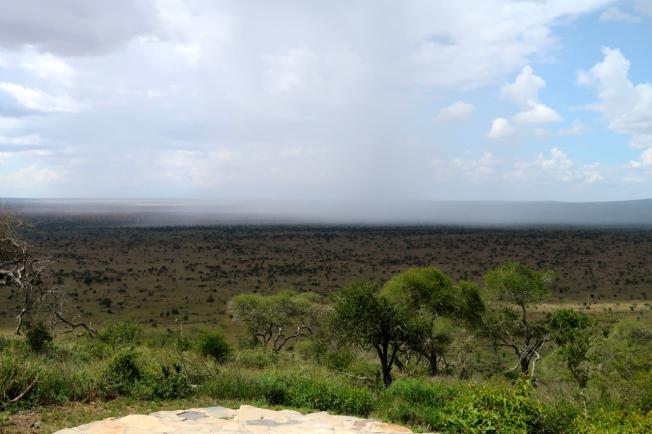 Rain - Tsavo, Kenya
