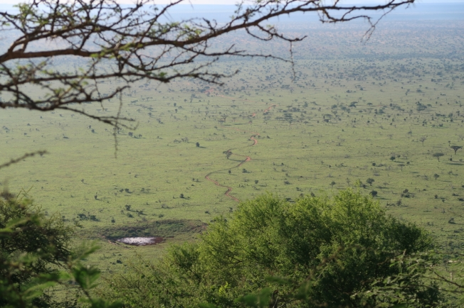 The view from Lions Bluff Camp, Kenya